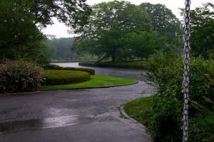 雨の東御苑