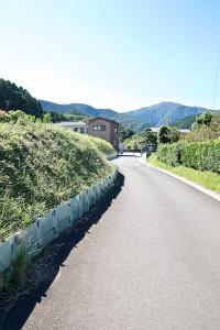 舗装路の日陰道