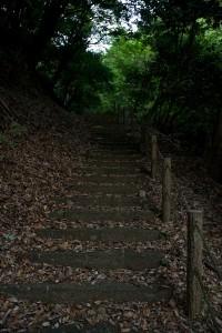 浄発願寺奥の院への路